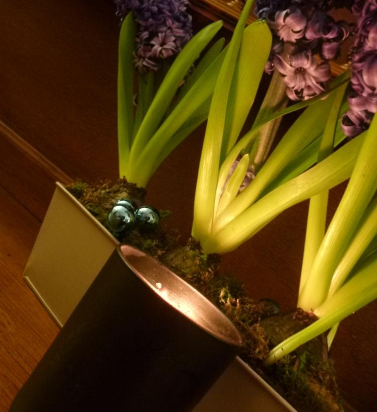 jacinthe-feu-bois-artisan-parfumeur-bougie-rapprochee