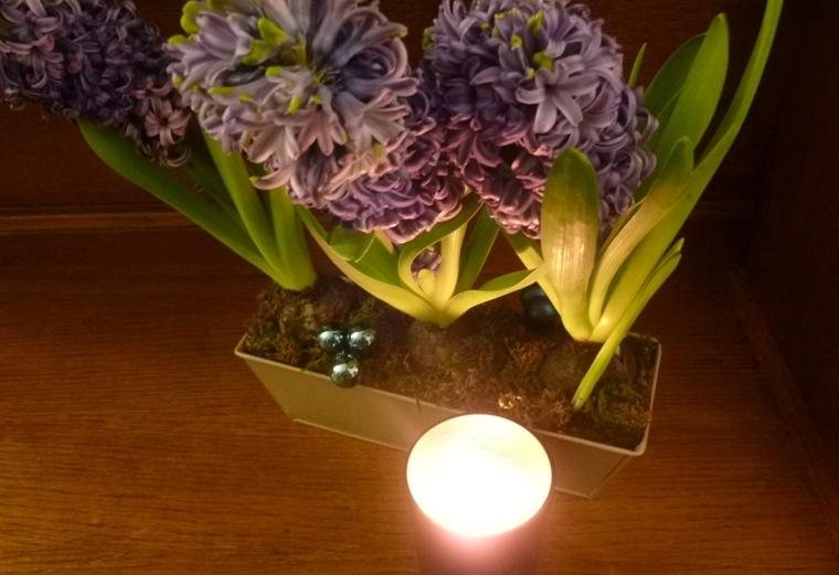 jacinthe-feu-bois-artisan-parfumeur-bougie